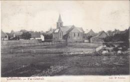 CALLENELLE - Vue Générale  1907 - Peruwelz