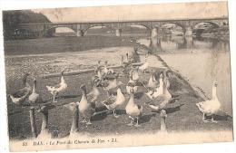 -40- Dax Le Pont De Chemin De Fer Et Les Oies  - Neuve  Dos Petites Traces - Dax