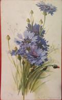 FLOWERS,VIOLET,1917,SENT TO SACARAMB,DEVA,VINTAGE POSTCARD,ROMANIA - Romania