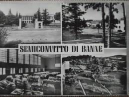 BANNE - SEMICONVITTO DI BANNE -VEDUTE  - --BELLA - Trieste