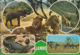 Kenia - Jambo - Wildlife - 3x Nice Stamps - Kenia