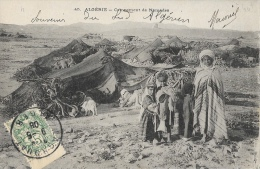 Algerie - Sud-Algérien - Campement De Nomades - Collection Idéal P.S.