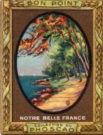 """bon Point"" PHOSCAO, Notre Belle France, LE CAP MARTIN, Alp.marit  N°23 -  (ap3) - Chocolat"