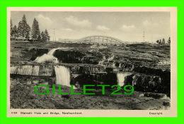NEWFOUNDLANDS - MANUELS FLATS AND BRIDGE - PHOTO TEX - AYRE AND SONS LIMITED - - Newfoundland And Labrador