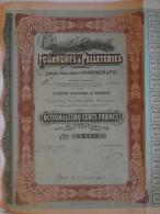 Action 1910 De 500 F Compagnie Generale Fourrures & Pelleteries Anciens Etablissements N Haendler & Fils Paris France - Textile