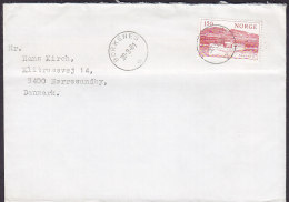Norway Deluxe BORKENES 1981 Cover Brief NØRRESUNDBY Denmark Schiff Ship Stamp - Briefe U. Dokumente