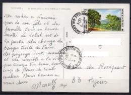 Nouvelle-Calédonie - 1974 - Carte - Yvert N° PA 148 - Luftpost