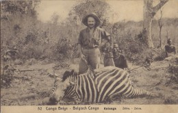 BELG. CONGO 1912 : PWS/E.P./P.St . -ILLUSTR.° Nr.52 – 10 C. : ZEBRA,FOEST,GUN,RIFLE, - Game