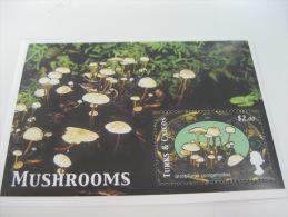 Turks & Caicos Islands-Mushrooms - Mushrooms
