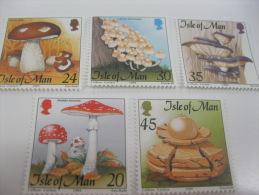 Isle Of Man-Mushrooms - Funghi