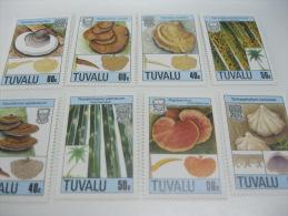 Tuvalu-Mushrooms - Champignons