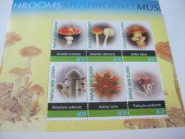 Papua New Guinea-Mushrooms - Champignons