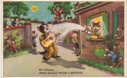 Thème - Illustration -  Chat Musicien Arrosé - Illustratoren & Fotografen