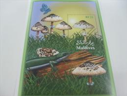 Maldives-Mushrooms-Butterflies - Funghi