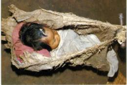 Amérique - Bolivie - Bébé Chimane Dans Son Berceau D'écorce D'arbre - Bolivia