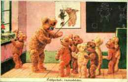 Ours Humanisé - Teddyschule, Anstandslehre école - Dressed Animals