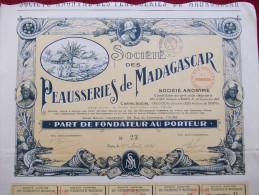 TRES RARE - Peausseries De Madagascar. Part De Fondateur Au Porteur. - Afrique