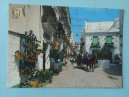 CADIZ - Plazuela Del Tio De La Tiza - Cádiz