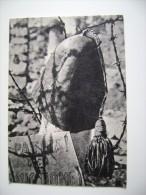 GORIZIA CIMITERO DEGLI EROI.COLLE DI S.ELIA.CADUTI DI GUERRA. WW1  1915-18 MILITARE  NO VIAGGIATA IMMAGINE OPACA - War 1914-18