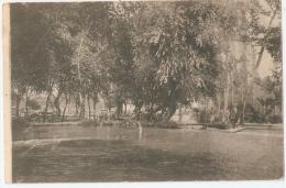 GREECE - EDESSA / VODENA - KIPRI - 1910s POSTCARD - Grecia