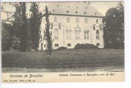 CP Environs De Bruxelles. Château Termeeren à Pepinghen (Hal) Légèrement Colorisé Vers 1905 Nels - Pepingen