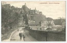 LUXEMBOURG - Partie Du Neuenweg  - Cheval - Luxembourg - Ville