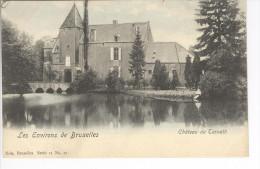 CP Environs De Bruxelles. Château De Ternat Ternath Légt Colorisé Vers 1905 Nels - Ternat