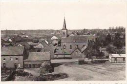 Stokrooi - Panorama - Hasselt