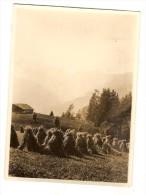 Photo Originale 73 Savoie Moisson Fenaison à CREST VOLAND Mont Charvin Photo Dubois - Lieux