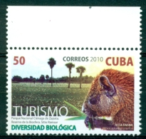CUBA 2010 ´ Hutia ´ Mnh*** - Rodents