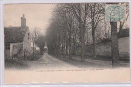 BEAUNE LA ROLANDE - Mail Des Maronniers - Ancien Rempart - Beaune-la-Rolande