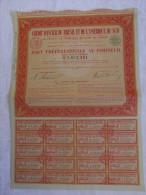 Action 1941 Credit Foncier Bresil Et De L'Amerique Du Sud 30 Mai 1941siege Paris  Titre Coupons - Banque & Assurance