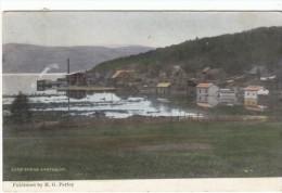 Barton Vermont, View Of Town On Lake Shore, C1910s Vintage Postcard - United States