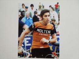 CYCLISME CICLISMO RADSPORT WIELRENNEN : Eddy MERCKX  MOLTENI  Reproduction - Cyclisme