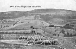 Larzac - Une Lavogne - 656 - France