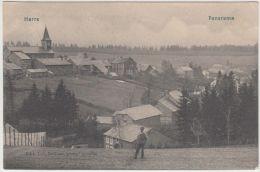 24816g CHAMPS De CULTURE - PANORAMA - Harre - 1911 - Manhay