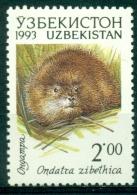 "Ouzbekistan / Uzbekistan 1993 "" Hors Série Animale : Rat Musqué "" -- Mnh*** - Rodents"