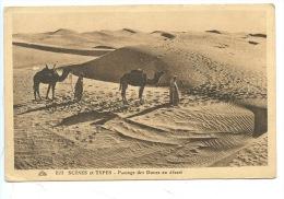 Scènes Et Types : Passage Des Dunes Au Désert (n°22) Afrique Du Nord - Sahara Occidental