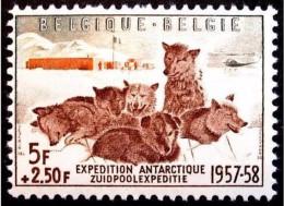 Belgium**Antartica-Sled Dogs-Chiens De Traineau-Sleehonden-SchlittenHunde-1957-MNH - Belgium