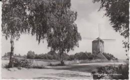 Zeddam Montferland Bergtorenmolen - Molinos De Viento