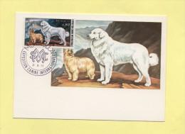 Monaco - Exposition Canine - Chiens Des Pyrenees -  N°1093 - Cartes-Maximum (CM)