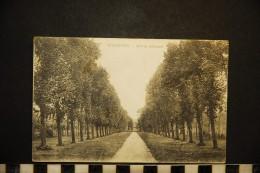 CP, 45, PITHIVIERS Allée De Bellecourt Ecrite En 1918 - Pithiviers