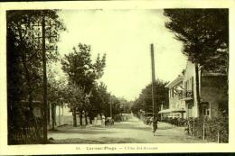 CPA CARNAC PLAGE  , L'une Des Avenues Avec Ses Commerces - Carnac