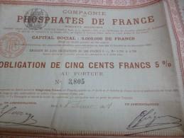 Rare Action 1897 Compagnie Des Phosphates De France.Tirage 3 000 Actions.500 Francs Au Porteur - Agriculture