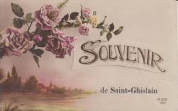 Souvenir De Saint- Ghislain   Rozen    Nr 1955 - Saint-Ghislain