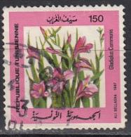 Tunisia, 1987 -  150m Gladiolus Communis - Nr.930 Usato° - Tunisia (1956-...)