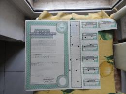 Società Pel Risanamento Di Napoli  Anno 1982 N.CINQUANTA  Azioni + Cedole - Azioni & Titoli