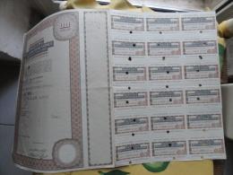 Società Pel Risanamento Di Napoli  Anno 1972 N.MILLE  Azioni + Cedole - Azioni & Titoli