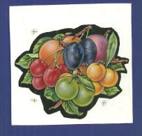 Etiquettes Superbe Dessin Original Pour Etiquette Gouache Fruits Cerises Prunes Abricots Peche Reine Claude - Fruits & Vegetables