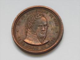 Médaille SANTA FE A La Fundador De Su Autonomia 22 De Noviembre De 1886 **** EN ACHAT IMMEDIAT *** - Royaux/De Noblesse